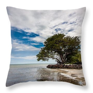Anne's Beach-3184 Throw Pillow