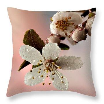 Announcing Spring Throw Pillow