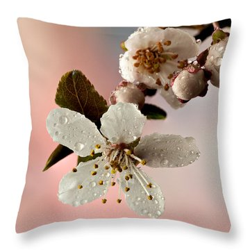 Announcing Spring Throw Pillow by Mary Jo Allen
