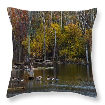 Annual Meet And Greet At The Pond Throw Pillow