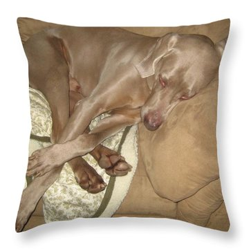 Another Dog Day Throw Pillow