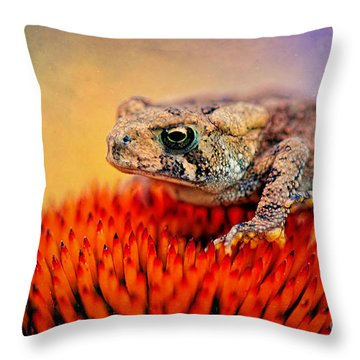 Another Fine Mess Throw Pillow by Lois Bryan