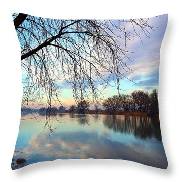 Throw Pillow featuring the photograph Another Morning Reflection by Lynn Hopwood