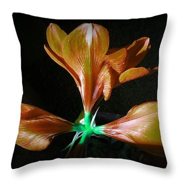 Another New Look Throw Pillow