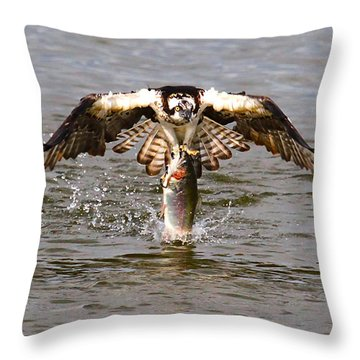 Another Piece Of Meat Throw Pillow