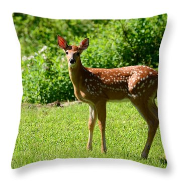 Another Reason To Love Spring Throw Pillow