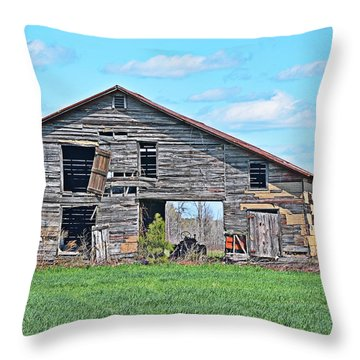 Throw Pillow featuring the photograph Another Spring by Linda Brown