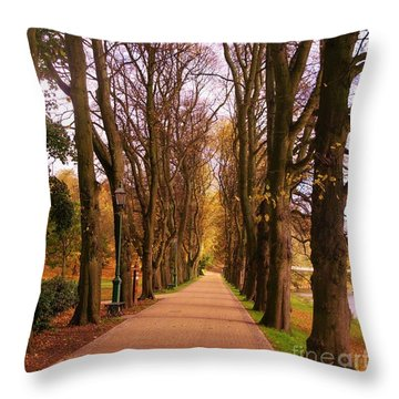 Another View Of The Avenue Of Limes Throw Pillow