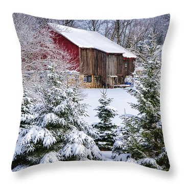Another Wintry Barn Throw Pillow by Joan Carroll