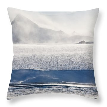 Diamond Dust Throw Pillows