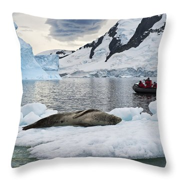 Antarctic Serenity... Throw Pillow