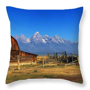 Antelope Barn Throw Pillow