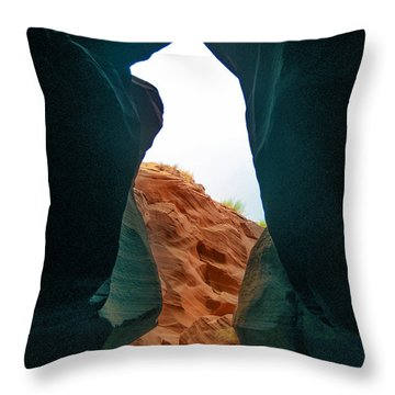 Antelope Canyon Bear Throw Pillow by Dany Lison
