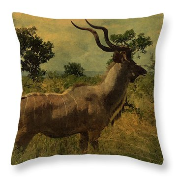 Antelope Throw Pillow