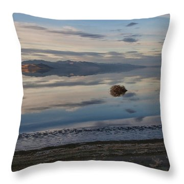 Throw Pillow featuring the photograph Antelope Island - Lone Tumble Weed by Ely Arsha