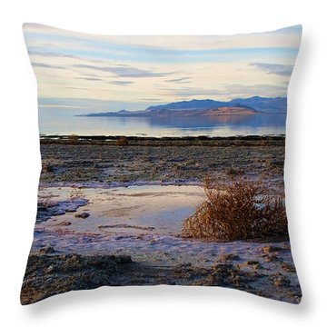 Throw Pillow featuring the photograph Antelope Island - Tumble Weed by Ely Arsha