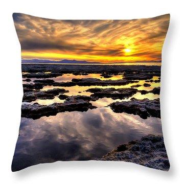 Antelope Sunset Throw Pillow