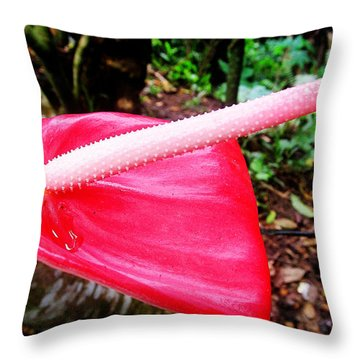 Anthurium Flower One Throw Pillow by Tina M Wenger