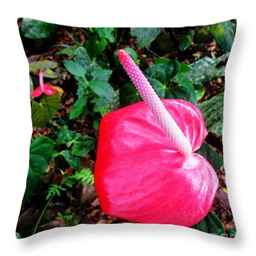 Anthurium Flower Two Throw Pillow by Tina M Wenger