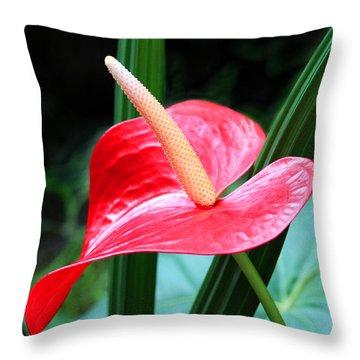Anthurium Throw Pillow by Mariarosa Rockefeller