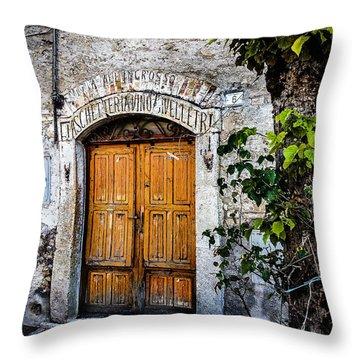 Antica Bottega Throw Pillow
