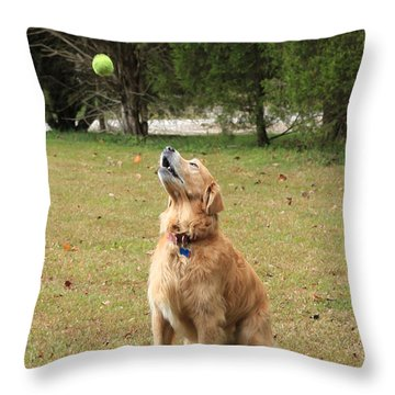 Anticipation Throw Pillow by Lorna Rogers Photography