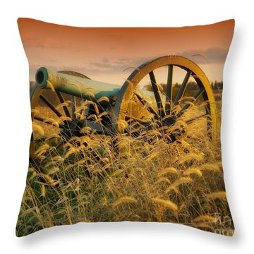 Throw Pillow featuring the photograph Antietam Maryland Cannon Battlefield Landscape by Paul Fearn
