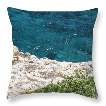 Antigua - Flight Throw Pillow