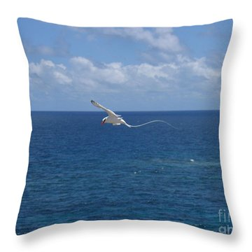 Antigua - In Flight Throw Pillow