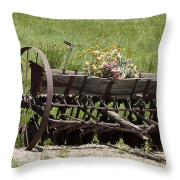 Antique Horse Drawn Seeder Throw Pillow by Daniel Hebard