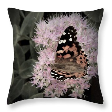 Throw Pillow featuring the photograph Antique Monarch by Photographic Arts And Design Studio