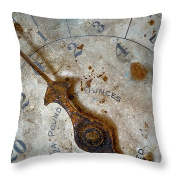 Antique Scale Throw Pillow by Sebastian Musial