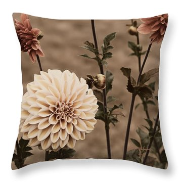 Throw Pillow featuring the photograph Antiqued Dahlias by Jeanette C Landstrom