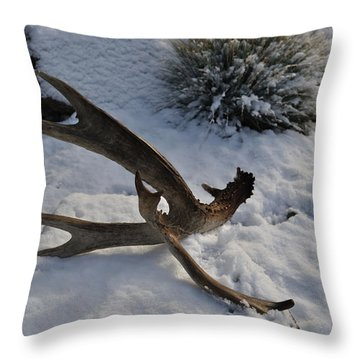 Antler 4 Throw Pillow by Heather L Wright