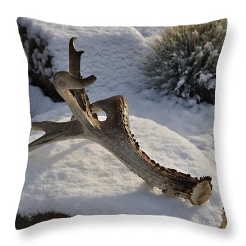 Antler Throw Pillow by Heather L Wright