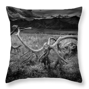 Antlers In Black And White Throw Pillow