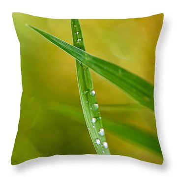 Ants Eye View Throw Pillow