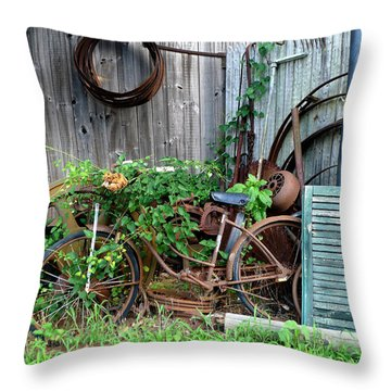 Any Old Iron Throw Pillow by Richard Reeve