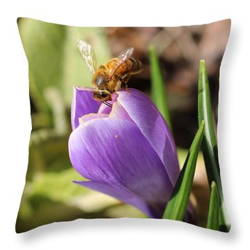 Anything Good In There? Throw Pillow by Lucinda VanVleck