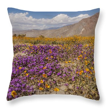 Anza-borrego Wildflowers 25 Throw Pillow