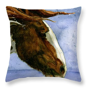 Apache Bachelor Stallion Of Sand Wash Basin Throw Pillow