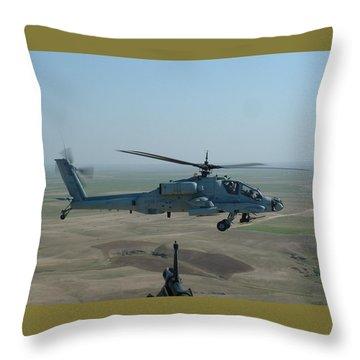 Apache Gray Throw Pillow