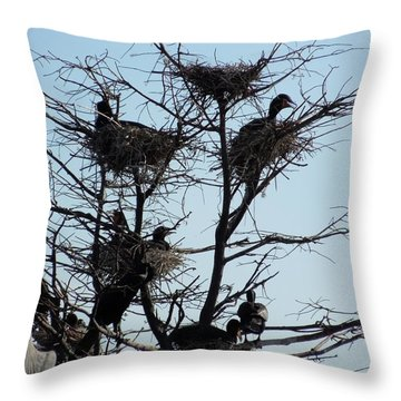Apartment Building With One Vacancy Throw Pillow