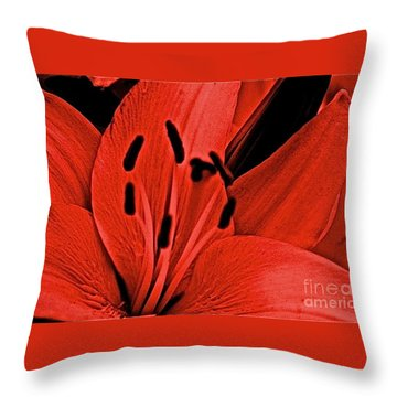 Aplomb Throw Pillow