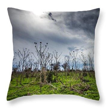 Apocalyptic Landscape Throw Pillow