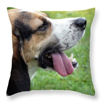 Apollo Is Hot Throw Pillow