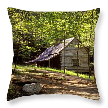 Appalachian Mountain Log Cabin Throw Pillow by Paul W Faust -  Impressions of Light