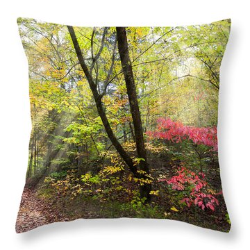 Throw Pillow featuring the photograph Appalachian Mountain Trail by Debra and Dave Vanderlaan