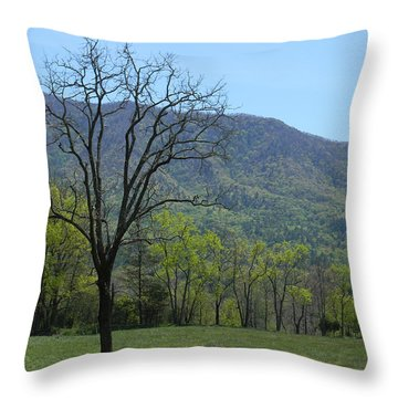 Appalachian Pathway Throw Pillow