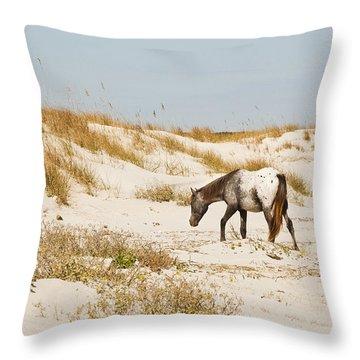 Appaloosa Beach Throw Pillow by Barbara Northrup
